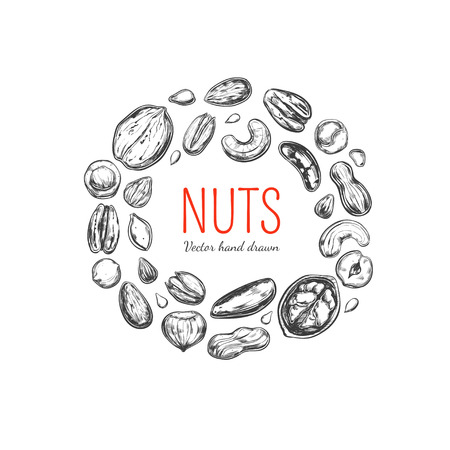 Nuts and seeds frame Stock Vector - 94024703