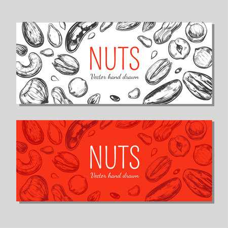 Nuts and seeds banners. Vector Hand drawn objects . Isolated on white. Modern brushpen Calligraphy. Design Template Stock Vector - 93961431