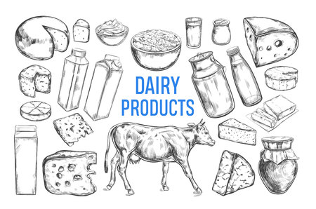 Dairy products vector collection. Cow, milk products, cheese , butter, sour cream, curd, yogurt. Farm foods. Farm landscape with cow. Hand drawn illustration Isolated objects on white