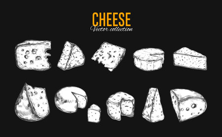 Cheese collection vector illustration. 向量圖像