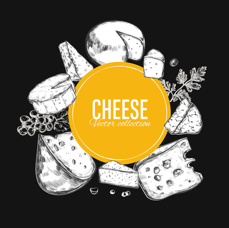 Cheese collection. Vector hand drawn illustration of cheese types .