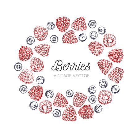 Wildberries vector vintage frame. Hand drawn decorative elements . Healthy food, raspberry, blueberry  イラスト・ベクター素材