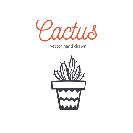 Cactus vector hand drawn. Desert houseplant sketch 写真素材 - 120880182