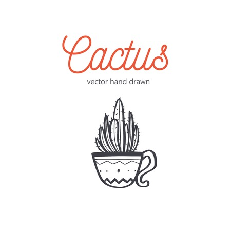 Cactus vector hand drawn. Desert houseplant sketch