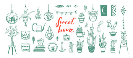 Home decor and House plants vector hand drawn set. Home decorations and interior design elements  イラスト・ベクター素材