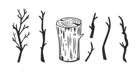 Wooden brunches and forest element of tree. Vector Ilustração