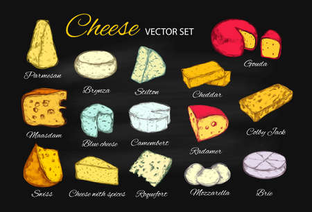 Cheese vector collection. Hand drawn illustration of cheese types Brie, Mozzarella, Stilton, Blue cheese, Camembert . Colorful, Isolated illustration on blackboard