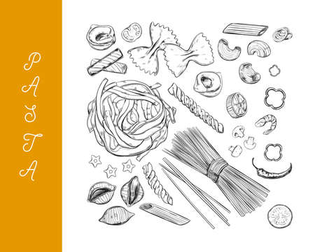Italian vector Pasta set. Different types of pasta. Hand drawn illustration. Isolated objects on white. Sketch