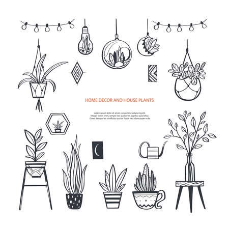 Home decor and House plants vector hand drawn set. Home decorations and interior design elements.Isolated boho and scandinavian cartoon Illustration