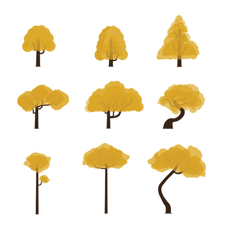 rt: Tree Collection 6