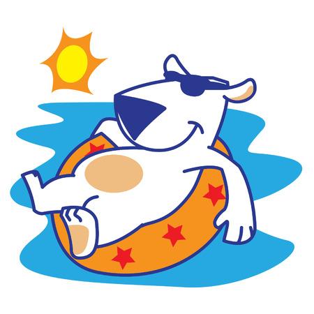 Polar Bear Sunbathing