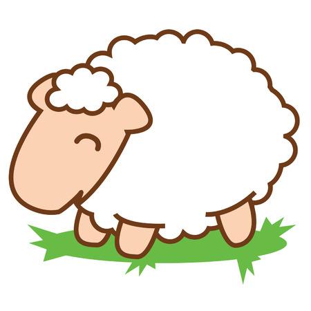 cut away: Sheep