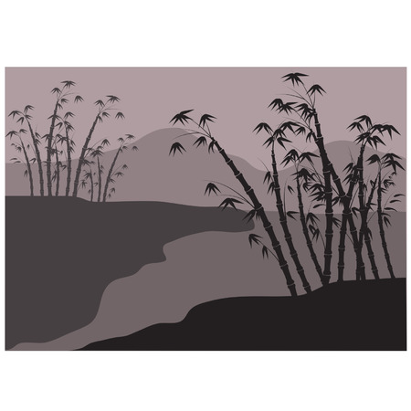 Silhouette of bamboo on the riverbank