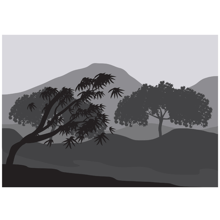 Silhouettes of weathered tree