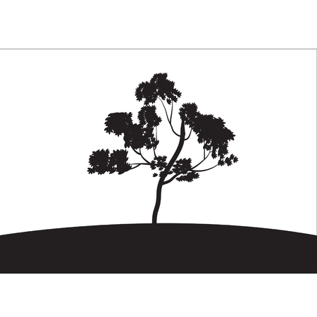 tree lined street: Silhouettes of tree grow Illustration