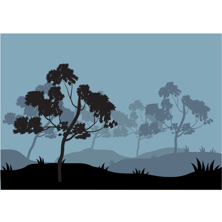tree lined street: Silhouettes of tree on the hill