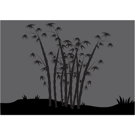 tree lined street: Silhouettes of bamboo in the fields Illustration