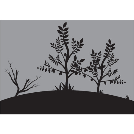 Silhouettes of small tree