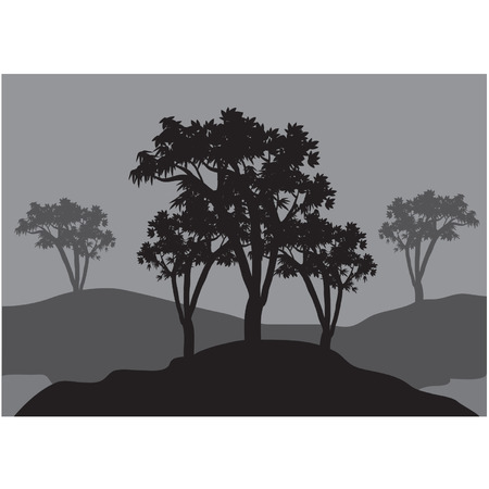 tree lined street: Silhouettes of three trees