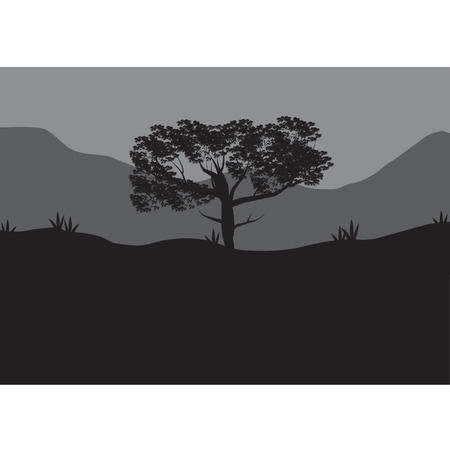 Silhouettes of shade trees
