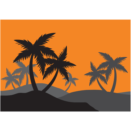Silhouettes of palm forest