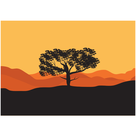 tree lined street: Silhouettes of tree in the desert