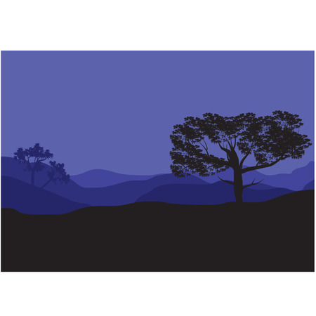 Silhouettes of shade trees at the night