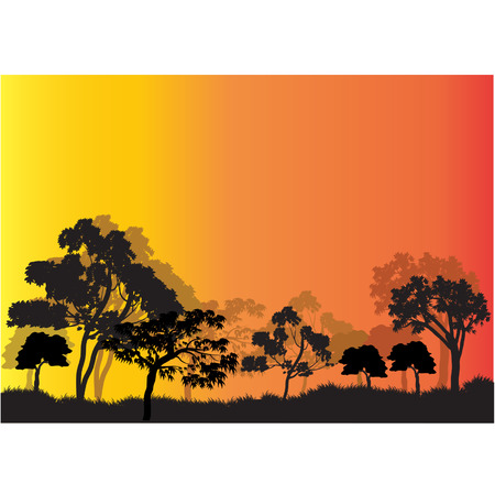 tree lined street: Silhouettes of tree in garden Illustration