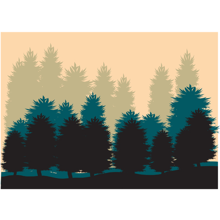 tree lined street: Silhouettes of Spruce Illustration