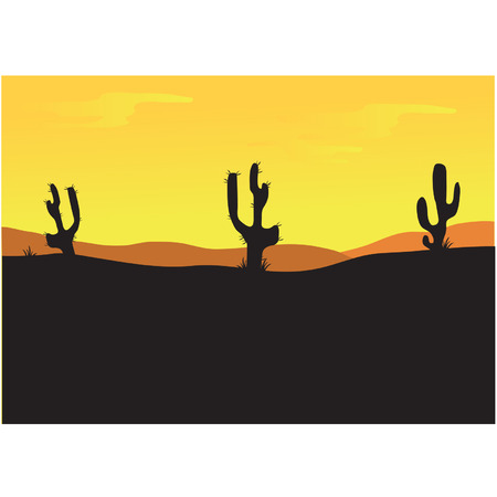Silhouettes of cactus at the afternoon