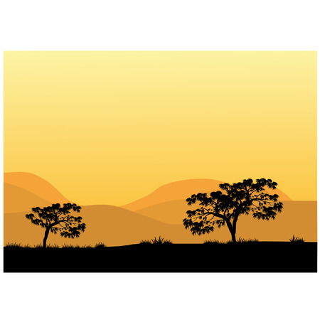 Silhouettes of trees at the noon