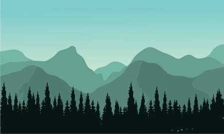 evergreen trees: Night forest with fir trees silhouettes and mouentain