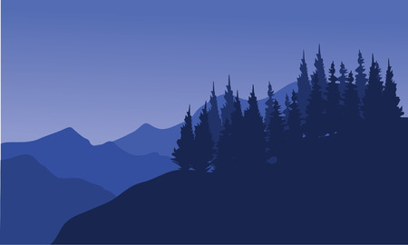 rockies: Silhouette of forest spruce in the hills