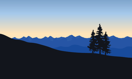 Silhouette of spruce in desert at the sunrise Illustration