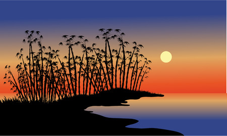 twilight: Silhouette of bamboo tree in beach at the night