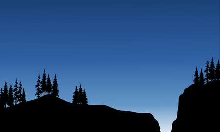 spruce: Scenery spruce in cliff of silhouette at the night