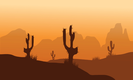 thorny: Sunset with Cactus in Desert vector illustration Illustration