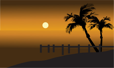 pier: Palm trees on beach and pier silhouette at tthe afternoon