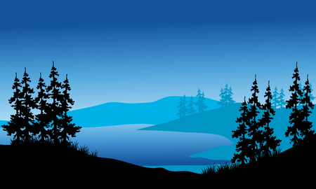 pine forest: Silhouette of spruce on the backgrounds blue in the hills
