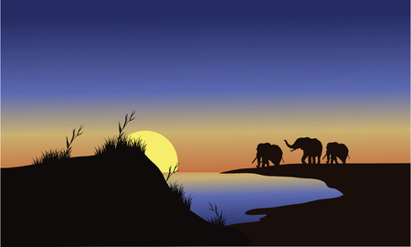 Silhouette family elephants at the sunset in lake