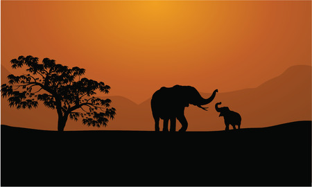 serengeti: Silhouettes of elephants on mountain backgrounds  at sunset
