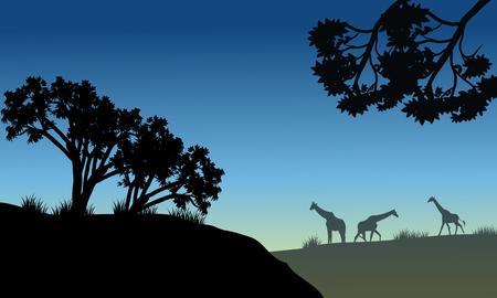 Silhouette of tree and giraffe in savana Ilustrace