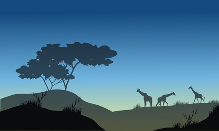blue  backgrounds: Silhouette of hills and giraffe with blue backgrounds Illustration