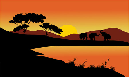 Landscape elephant of silhouette at the sunset 일러스트