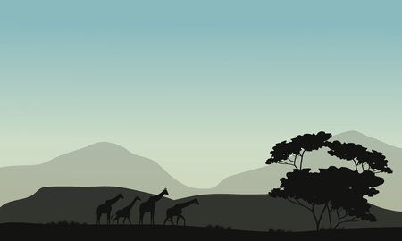 Silhouette of tree and giraffe in the hills