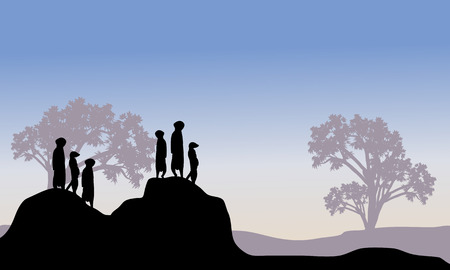 watchful: Silhouette of meerkat family in hills