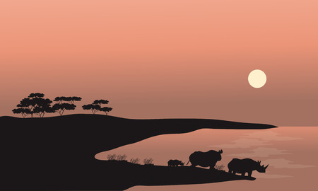 national parks: Two rhinoceros silhouette at the sunset