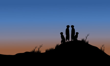 watchful: Meerkat silhouette in the hills at night