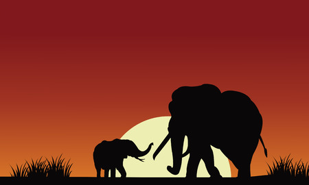 gently: Silhouette of elephant with sun at the morning