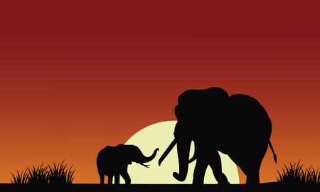 Silhouette di elefante con il sole al mattino